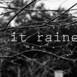 rain-15 copy