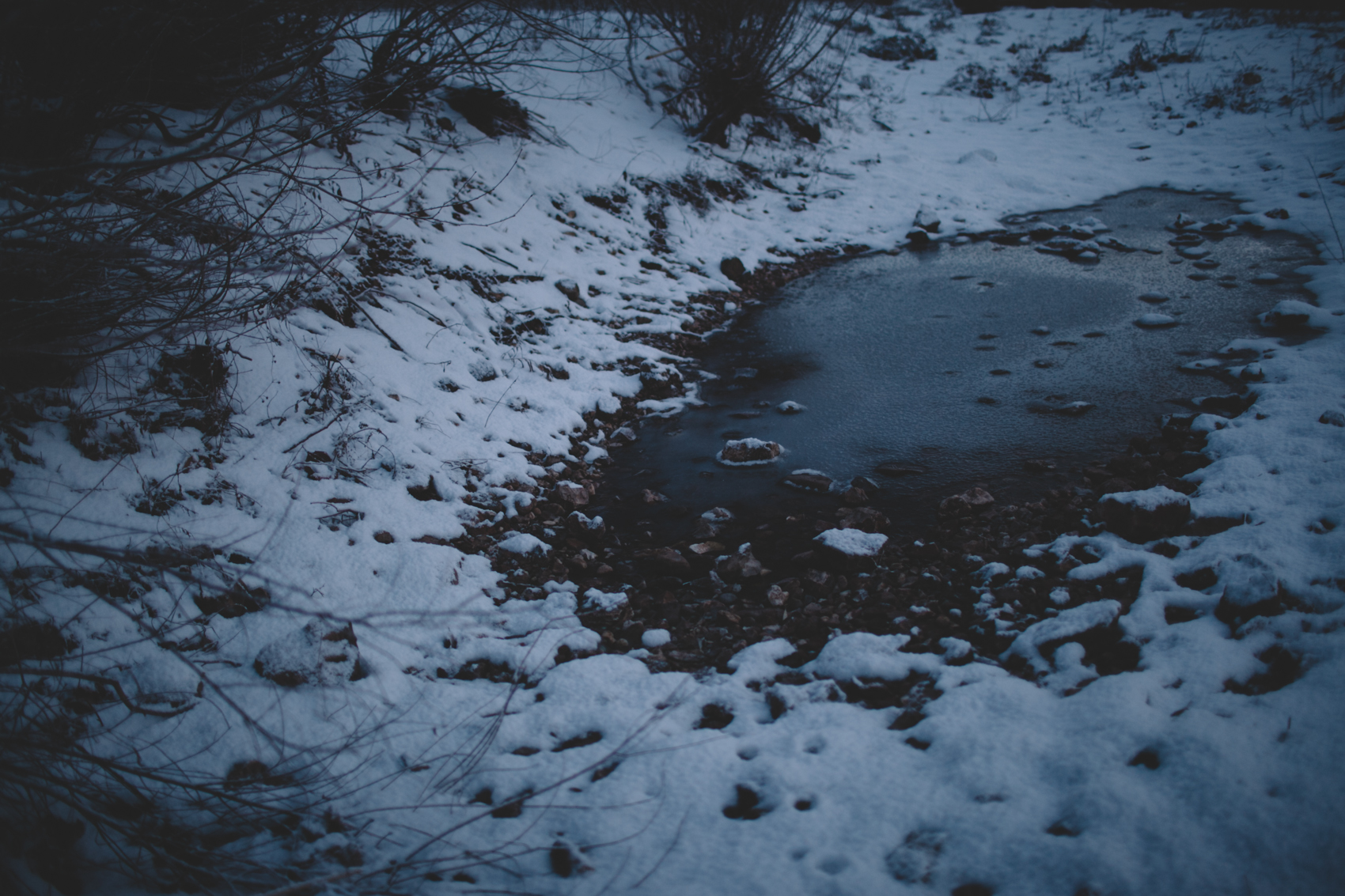 snowday2015-19
