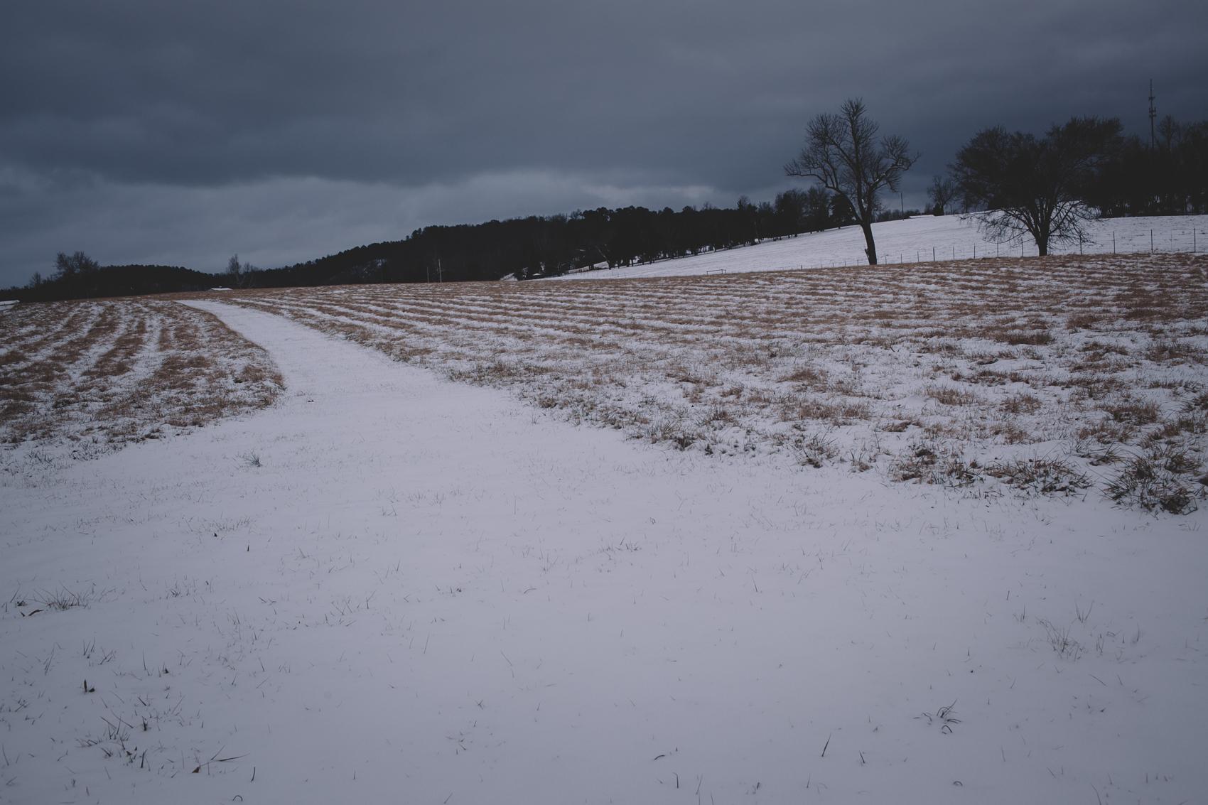 snowday2015-5