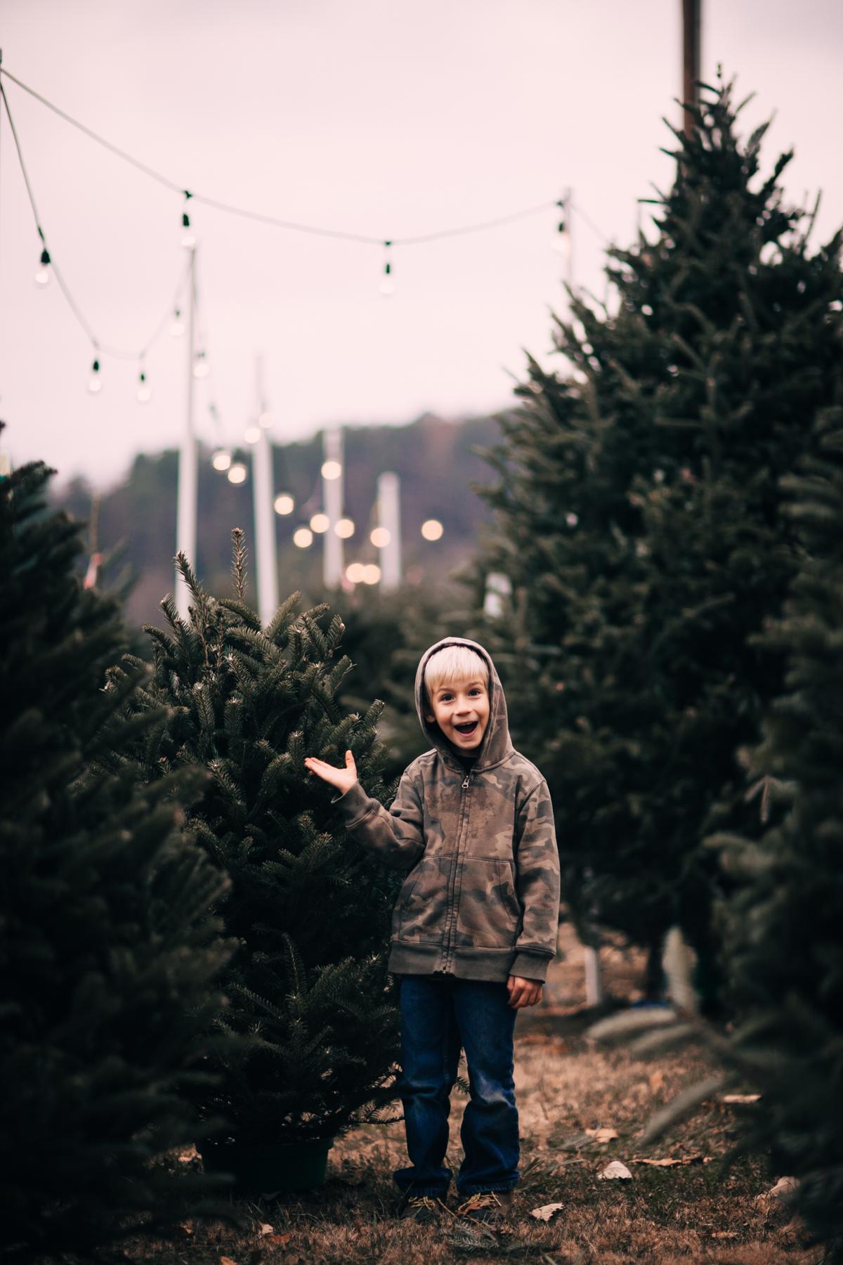 wareaglechristmas-5