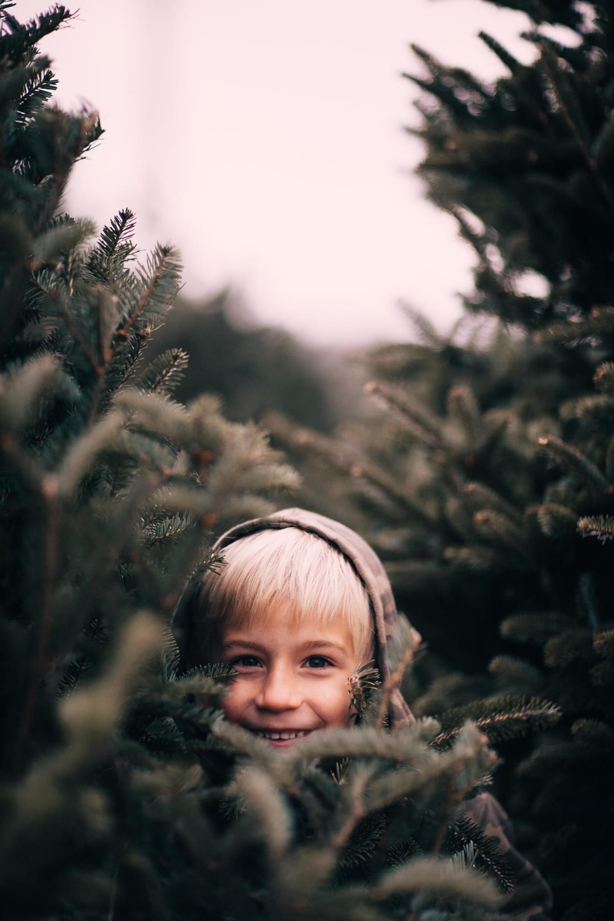 wareaglechristmas-6