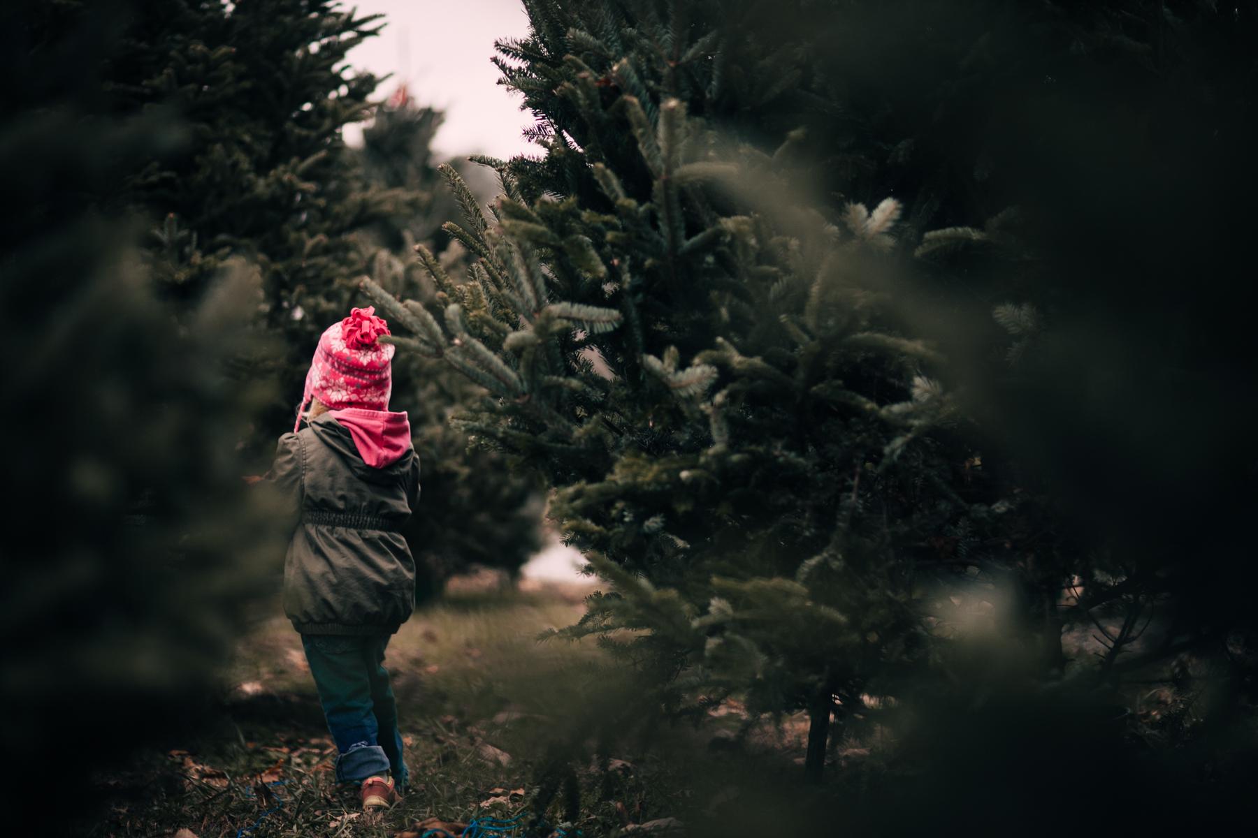 wareaglechristmas-7